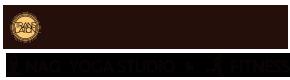 NAG YOGA STUDIO(ナグヨガスタジオ)は溶岩石を使用したホットヨガスタジオです